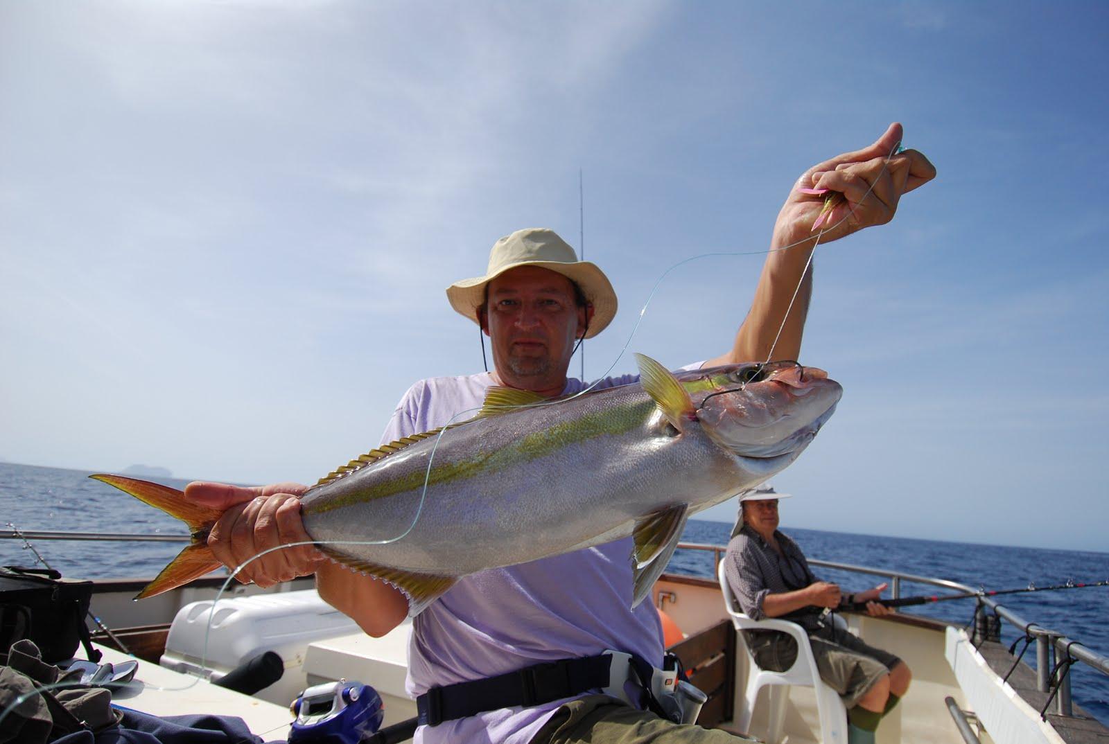 Pesca en la Graciosa Serviola