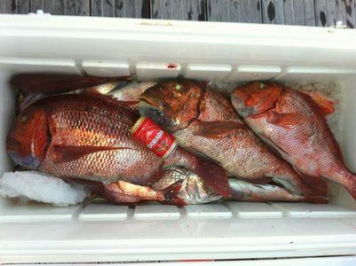 Pesca en La Graciosa 2012 Urtas