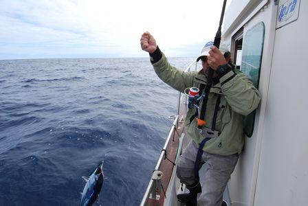 Pesca en  La Graciosa 2012 Melva