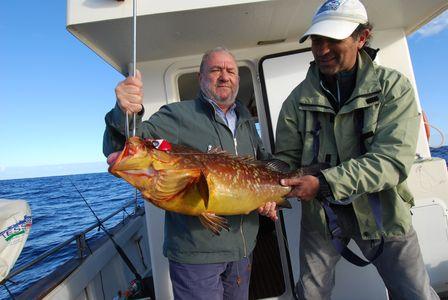 Pesca en  La Graciosa 2012 Mero